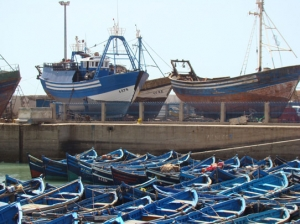 Fishing village of Essaouira in Morocco - our painting holiday location