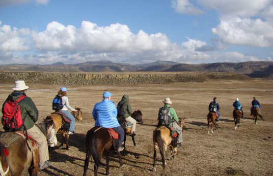 Watching wolves on horseback in Bale Mountains