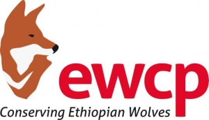 Ethiopian Wolf Conservation Project