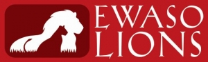 ELWASO Lions Logo