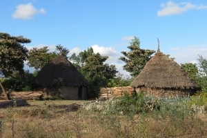 Ethiopia homes