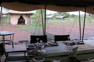 serengeti ronjo camp