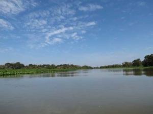 Pantanal g 6