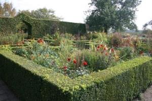 jardin-plume