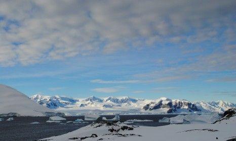 arctic 11