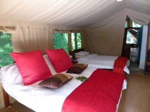 Tangulia bedroom