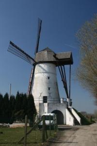 belgium-windmill